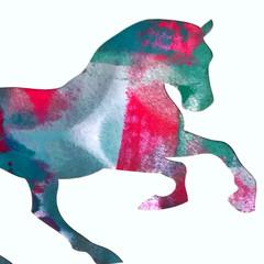 Hailey the Horse