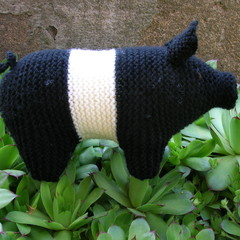 Pig - black & white piggy - Hand knitted soft toy - ready to post