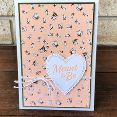 Meant To Be Card