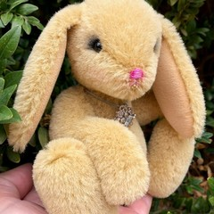 Amber - Handsewn alpaca bunny, adult collectible