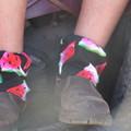 Watermelon Adult Sock Protectors