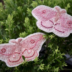Embroidered Emperor Gum Moth Brooch / Textile Brooch / Mothers Day Gift