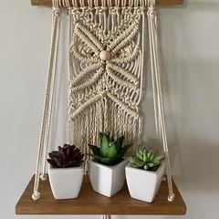 Butterfly shelf hanger
