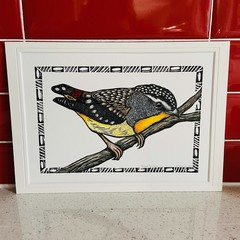 Australian Birds -Spotted Pardalote 2/25- Linoprint and Watercolour