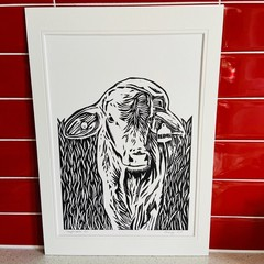 Australian Farm Animals - Droughtmaster Calf - Linoprint