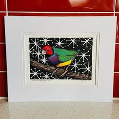 Australian Birds - Gouldian/Rainbow Finch 1/25 Lino-print and Watercolour