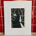 Australian Birds - Magpie 2/25 - Linoprint and watercolour