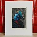Australian Birds - Cassowary 1/25 - Linoprint and Watercolour