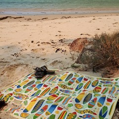 PICNIC RUG/BEACH MAT   - SURFING