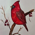Original watercolour red robin painting