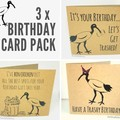 Bin Chicken (Ibis) Birthday Cards - Set of 3 (Free Post to Aus)