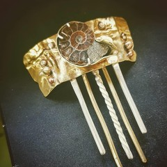 Ammonite Hair Comb