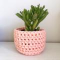 Crochet planter   Pen holder   Desk accessories   Makeup   PATEL PEACH