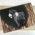 Carnaby's Black-Cockatoo - Australian wildlife art greeting card. Acrylic paint
