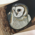 Masked Owl - Australian wildlife art greeting card. Acrylic painting. Threatened