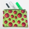 Cricket balls pencil case