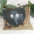 Carnaby's Black-Cockatoo - Australian wildlife art greeting card. Acrylic paint