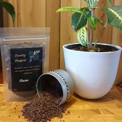 Body Scrub (cacao)