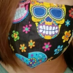 Homemade Fabric Face Mask Cover w/pocket for filter (Filter NOT included)  Skull
