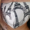 Homemade Fabric Face Mask w/pocket for filter (Filter NOT included) Paris Eiffel