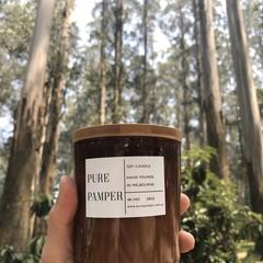 Soy Candle - Australian Bush ( top 3 seller)