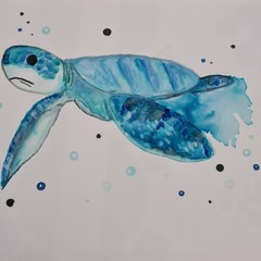 Original blue turtle watercolour painting