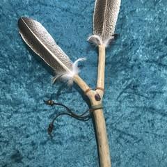 Ceremonial Tool - Talking Stick