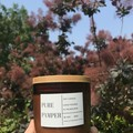 Soy Candle - Japanese Honeysuckle