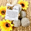 Sunflower Seed Bombs 6pc Bag