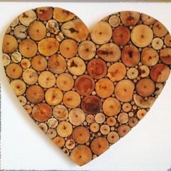 Fallen Branch Heart (52)