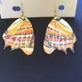 Australian Butterfly Series Earrings