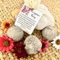 Livingston Daisy 6pc Seed Bombs Bag