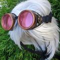Steampunk Gear Goggles