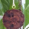 Hanging Banksia Diffuser