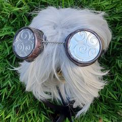 Steampunk Swirl Goggles
