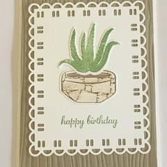 Succulent plant aloe vera Birthday Handmade Card - FREE POST