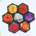 Rose Garden Hand-pieced  Hexagon Table Centre