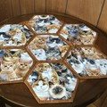 Cat Pack Hand-pieced  Hexagon Table Centre