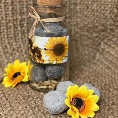 Sunflower Seed Bombs Large Jar