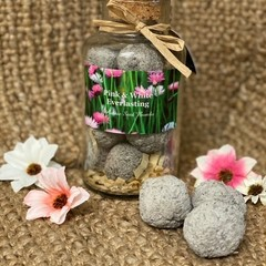 Native Pink & White Everlasting Daisy Seed Bomb Jar Large