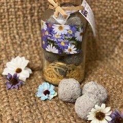 Native Blue & White Swan River Daisy Seed Bomb Jar Large