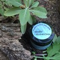 Mugwort & White Sage Salve/ Meditation Balm
