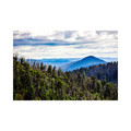 Steavensons Falls Mountain View - Laminated Poster A3