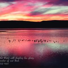 The Splendor of our God - Isaiah 35:2 NLT