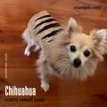 Pretty Dog Peach - Tasmanian Tiger Pet Coat - Extra Small