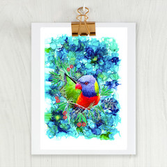 ' Rainbow Lorikeet' A4 or A3 Reproduction Giclee Art Print