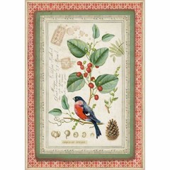 Rice Paper - Decoupage - 1 x A4 Size Sheet - Botanic Bird