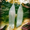 Hand fabricated Eucalyptus Leaf  Earrings