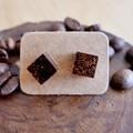 Coffee grounds resin earrings (cube)