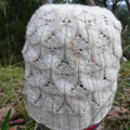 Cream hat ladies lace